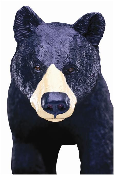 Wildlife Wonders™ Black Bear coming your way. Clear the path!