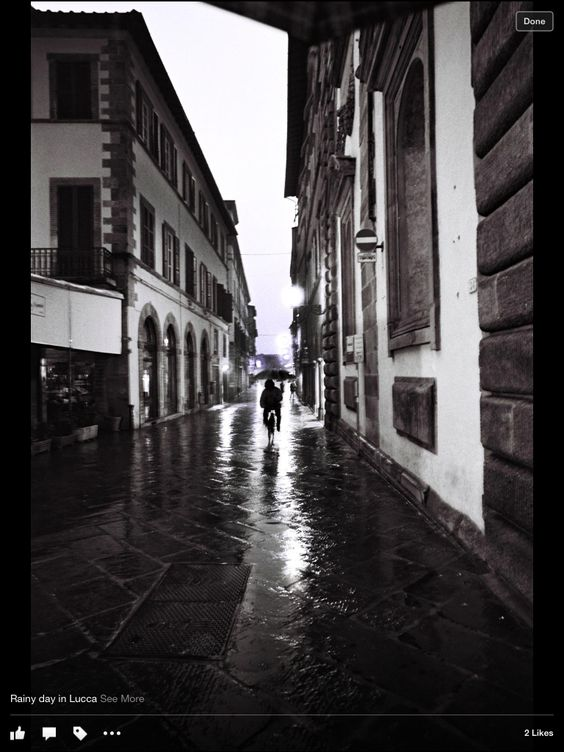 Lucca, Italy Copyright Jayne M Weiske