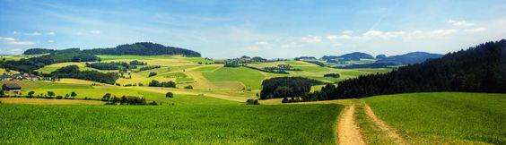 Das Oberösterreichische Mühlviertel, im Dreiländereck Österreich – Deutschland –Tschechien gelegen, ist geprägt von Feldern, Wiesen, Wäldern, tief eingeschnittenen wiesenreichen Tälern, bizarren Steingebilden und idyllischen Bächen.