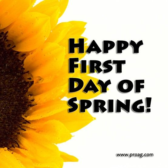 Britax Customer Service >> Feel like, First day and Spring day on Pinterest