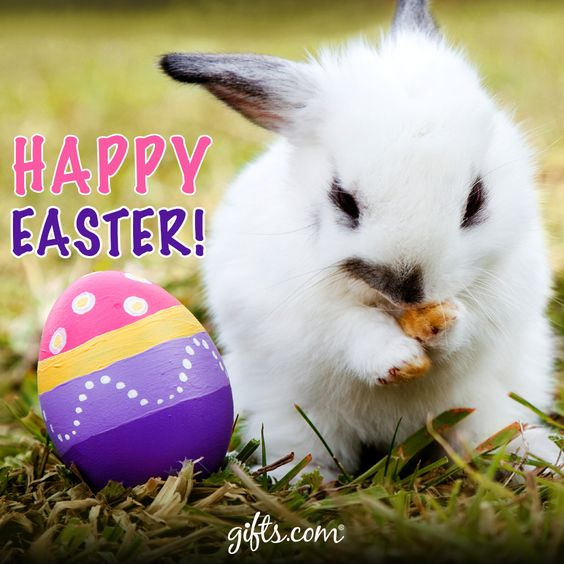 Happy Easter! Hope you have a wonderful Easter!