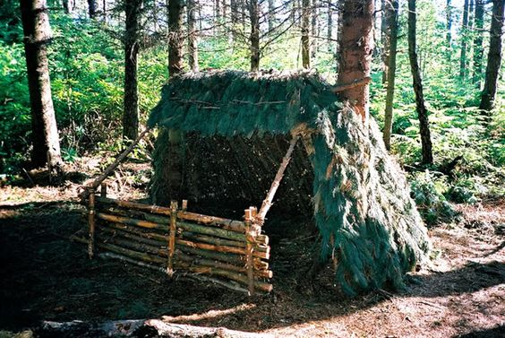 Types Of Lean To Shelter : Lean to with reflector survival tips pinterest