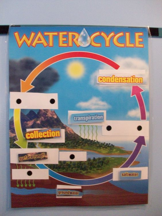 Water Cycle poster activity