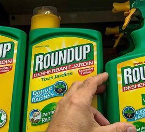 L'UE+peine+à+se+mettre+d'accord+sur+le+glyphosate,+herbicide+controversé