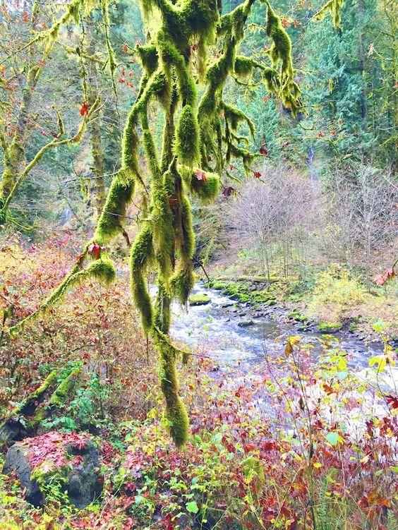< eagle creek, oregon >