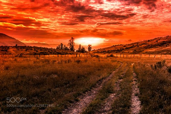 SUNSET AT GRASSLAND by raulweisser. Please Like http://fb.me/go4photos and Follow @go4fotos Thank You. :-)