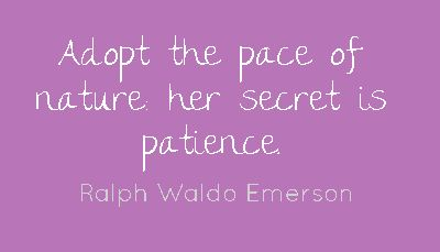 Adopt the pace of nature: her secret is patience....