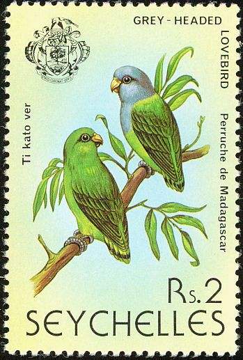 Grey-headed Lovebird stamps - mainly images - gallery format