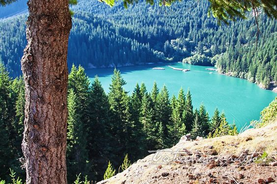 Summer colors in the Cascades, Montana at Diablo Lake