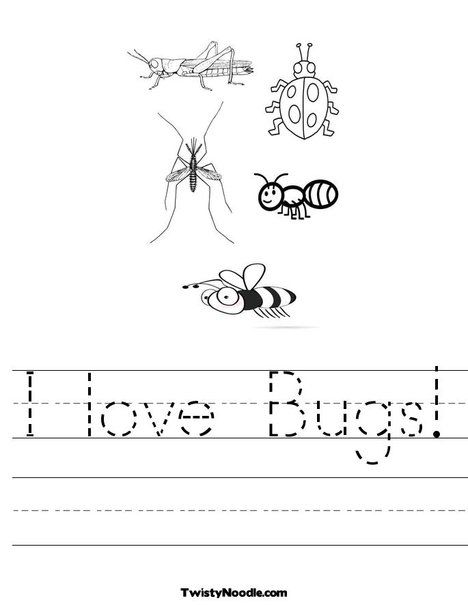 Printables Free Insect Worksheets insects and worksheets on pinterest free bugs worksheets