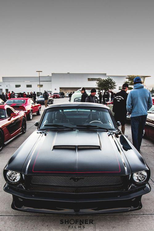 Mustang by Daniel Shofner // Edited by MFL