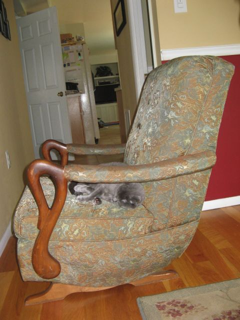 rocking chair rocker and more tennessee colors rocking chairs chairs ...
