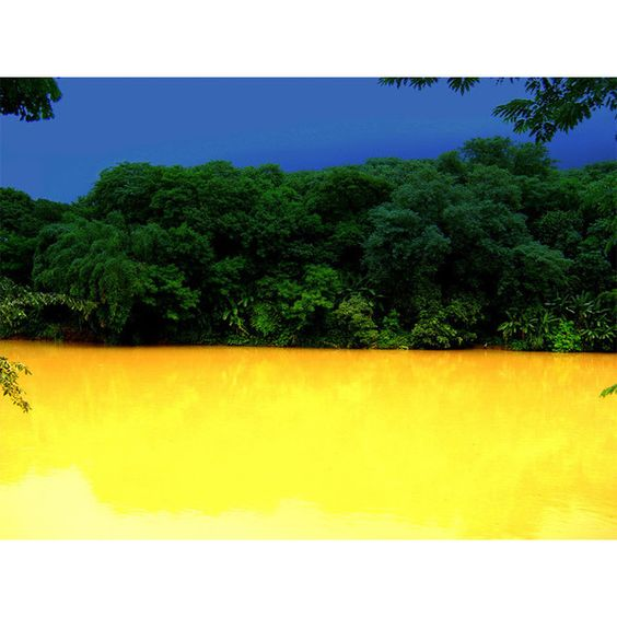 Peaceful Nature by Jose Roberto V Moraes-AmO Images: Capturing the... ❤ liked on Polyvore