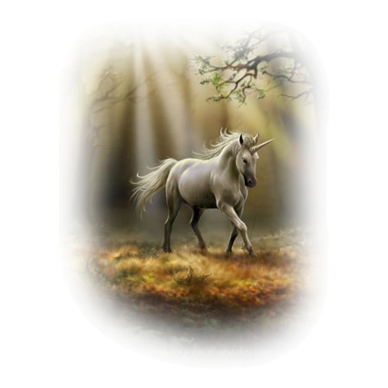FlickCabin.com - versacegraficB3.png ❤ liked on Polyvore featuring animals, fantasy, animals/insects, horse and unicorns