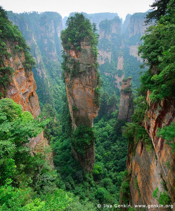 Avatar Hallelujah Mountain Tianzi Mountain Nature Reserve ...