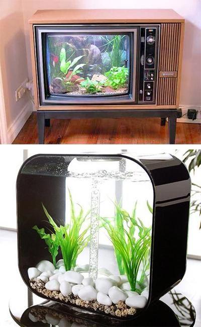 Pinterest the world s catalog of ideas for Aquarium interior decoration