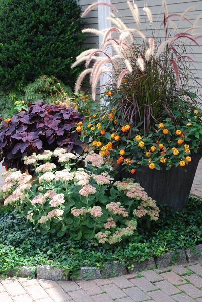 Perennial gardens landscape design and construction for Perennial landscape design