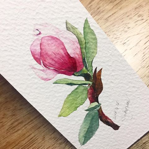 Watercolor Art By Mya Interests On Fleurs Floral Watercolor