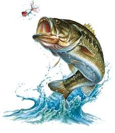 Jumping out of water i can 39 t wait to go fishing oh for Youth fishing tournaments near me