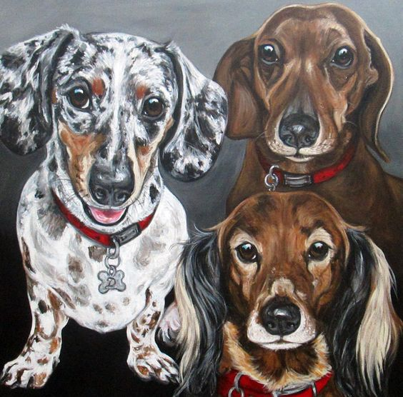 """Daffani, Buster, and Ruby"" 24x24"" 10% donation to National Mill Dog Rescue. http://www.ashleyreid.net"