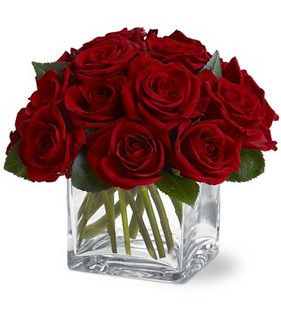 Simply elegant, this compact design of one dozen roses in a square vase makes a lasting impression. Roses cut short will last longer than the traditional long stem arrangement. Add more roses for a larger impact. - http://www.floralexpressionsjanesville.com/