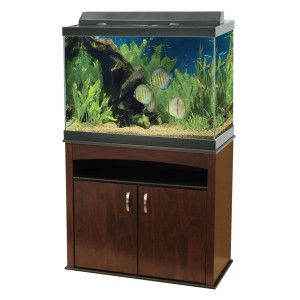 Aqueon 65 gallon aquarium ensemble aquariums petsmart for Petsmart fish tank stand