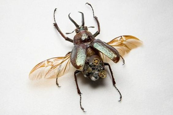robotic steampunk insects