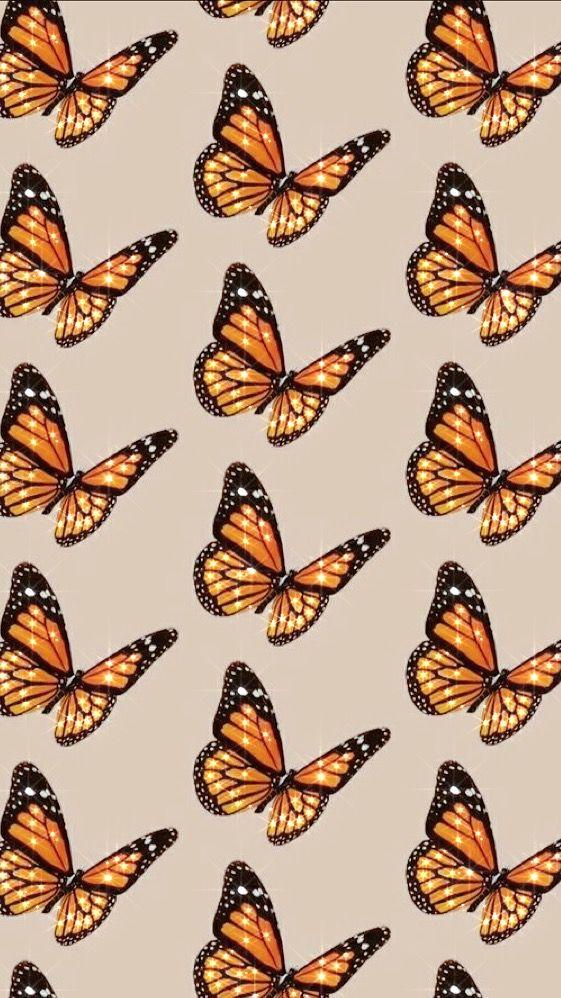 Aesthetic Bling Butterflies Aesthetic Iphone Wallpaper Butterfly Wallpaper Iphone Background Wallpaper
