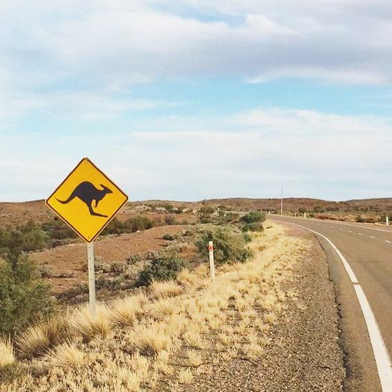 On the road again ! #explorersway #australiagram #australia #exploreaustralia #visitaustralia #seeaustralia by travelmehappy