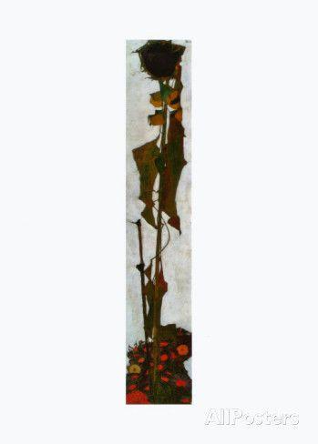 Sunflower, c.1909 Prints by Egon Schiele - AllPosters.co.uk