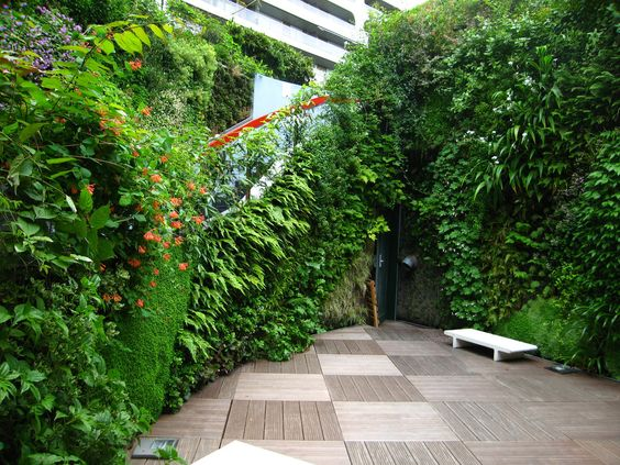 Ken Club, Paris | Vertical Garden Patrick Blanc