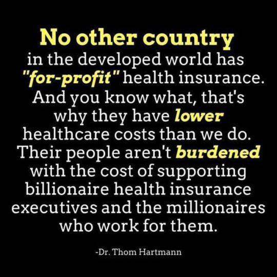 For Profit Health Insurance Politicians Such As Paul Ryan And