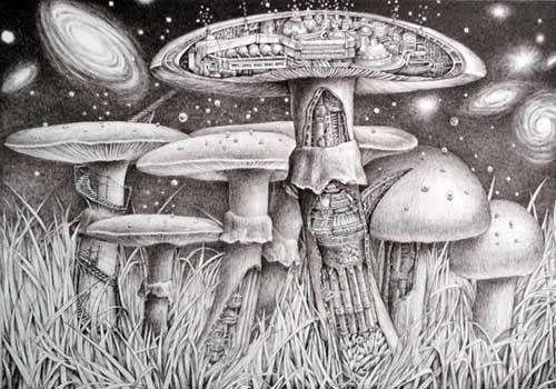 Star Factory Mushrooms by Kozue Oshima - JAPIGOZZI Collection 2012 - Contemporary Japanese Art Collection
