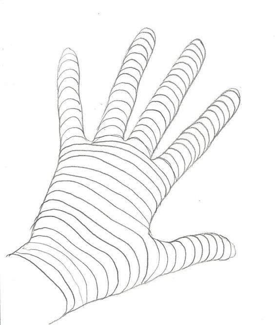 Contour Line Drawing Practice : Contour drawings contours and on pinterest