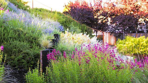 A Hillside Garden S Ingenious Design Hillside Landscaping Hillside Garden Landscaping A Slope
