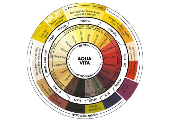urine color wheel aqua vita project - Rsine Colore