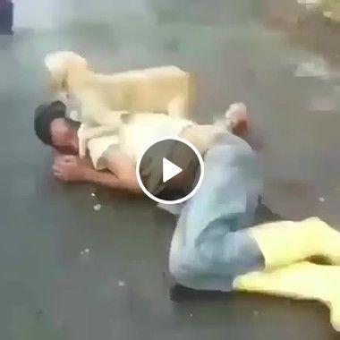 Dá uma olhada no que esse cão faz, quando alguém tenta chegar perto do seu dono!