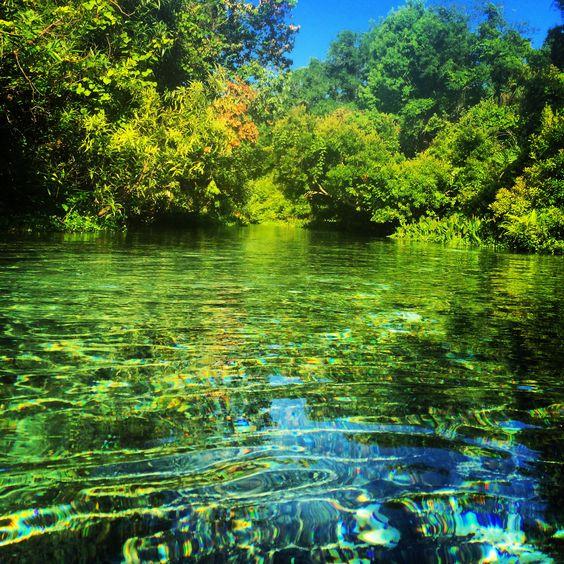 Rock Springs: Altamonte, FL