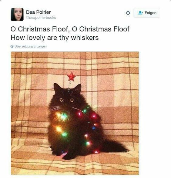 Idea number #Cat I'm going to do this next Christmas