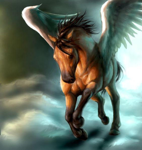 Bay Pegasus in clouds