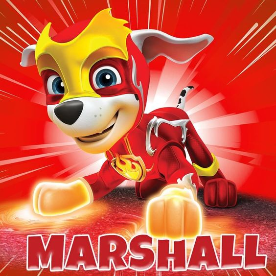 Paw Patrol On Instagram With His Mighty Heat Mighty Marshall Can Melt Anything He Touche Paw Patrol Pups Marshall Paw Patrol Paw Patrol Birthday Decorations