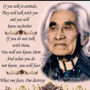 If you talk to animals