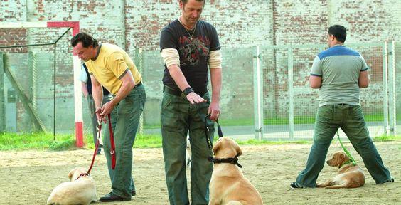 """""""Underdogs"""" - Kino-Tipp - Wie die """"harten Hunde"""" im Gefängnis durch vierbeinige Zöglinge ihre weiche Seite entdecken, ist beste Kino-Unterhaltung, die lustig und anrührend zugleich ist."""