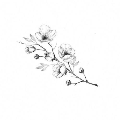 Tattoo Designs Black And White Flower Tattoo Jasmine Flower Tattoos Magnolia Tattoo