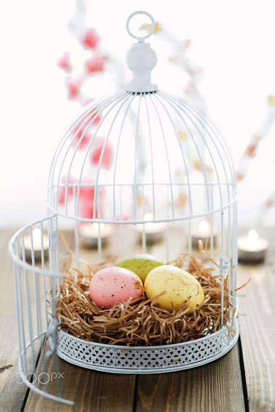 Happy Easter! May your basket be filled with happiness, joy and love. xoxo ♥♥ paola: