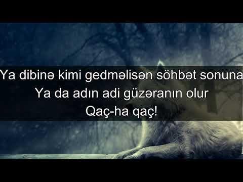 Qacis Sen Tek Canavarsan Sarkisozleri Muzik Turkiye Azerbaijan Sarki Sozleri Sarkilar Canavarlar