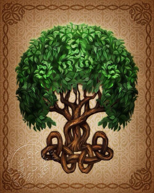 Celtic Tree of Life Meaning The Celtic tree of life ...