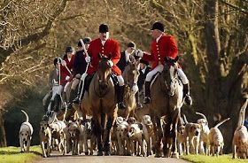 Fox Hunting on Boxing Day