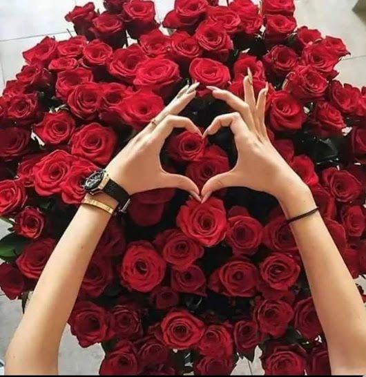 Buongiorno Grazie A Tutti Per I Vostri Post Che Condividete Ogni Giorno E P Mazzo Di Fiori Bellissimi Fiori Rose Meravigliose