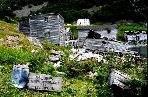 Abandoned Canada: Ireland's Eye...once a fishing village in Trinity Bay Newfoundland: